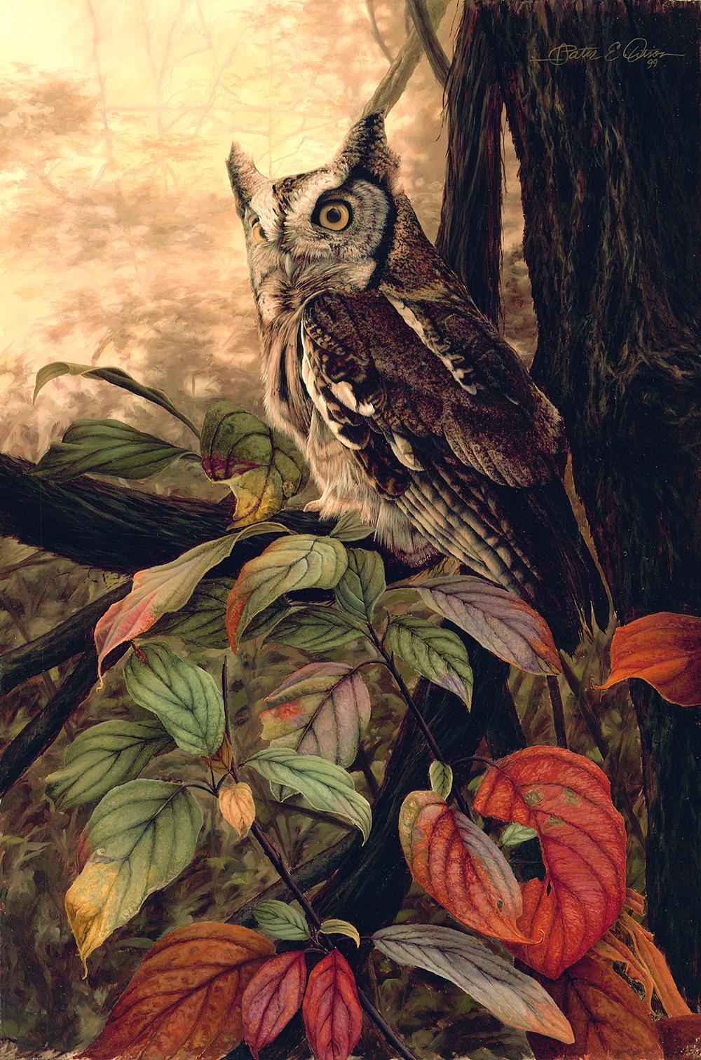 """Nocturne, Eastern Screech Owl"", 12"" x 18"", oil on panel"